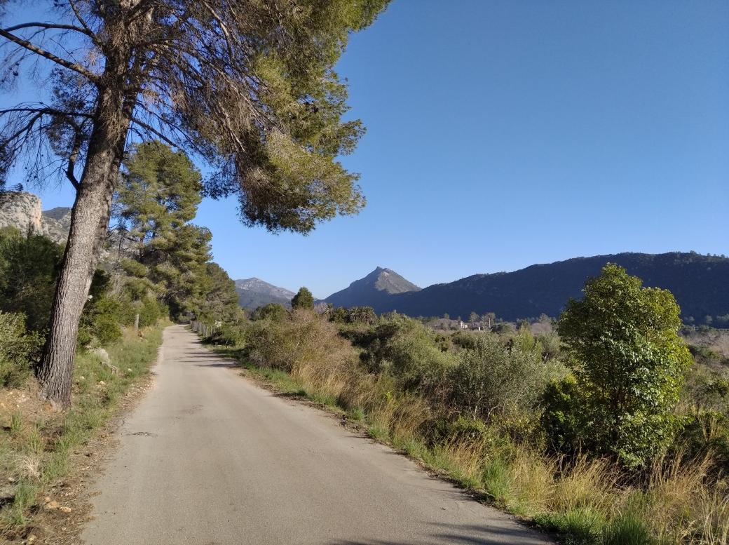 Cami Vall de la Casella