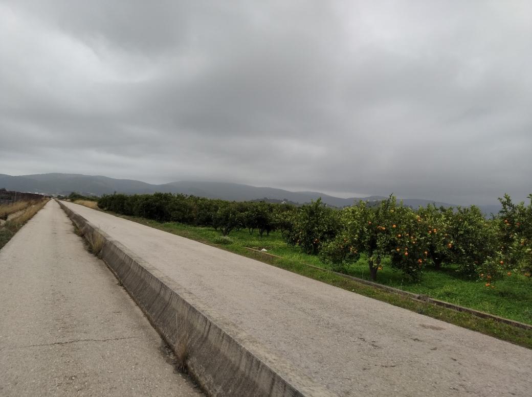 Carril Bici hacia Beniarjó 14