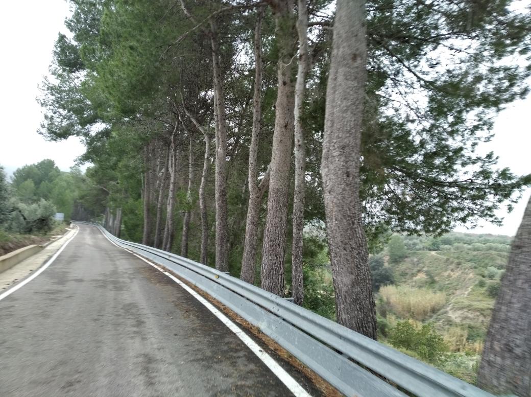 Ruta por l'Ombría del Benicadell 10